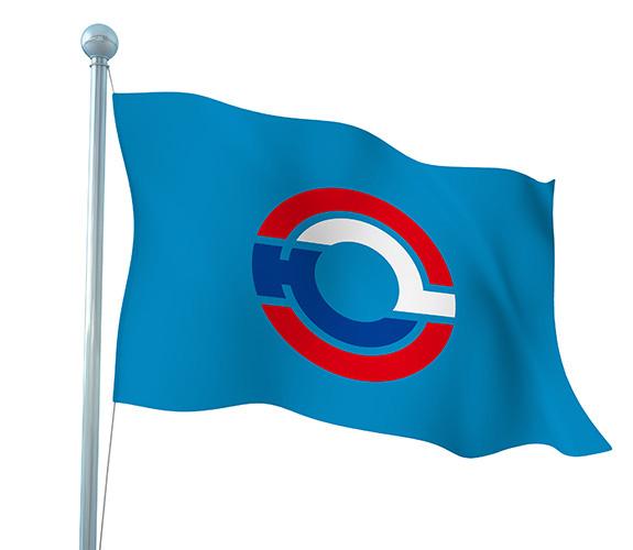 恒力波纹管厂旗设计