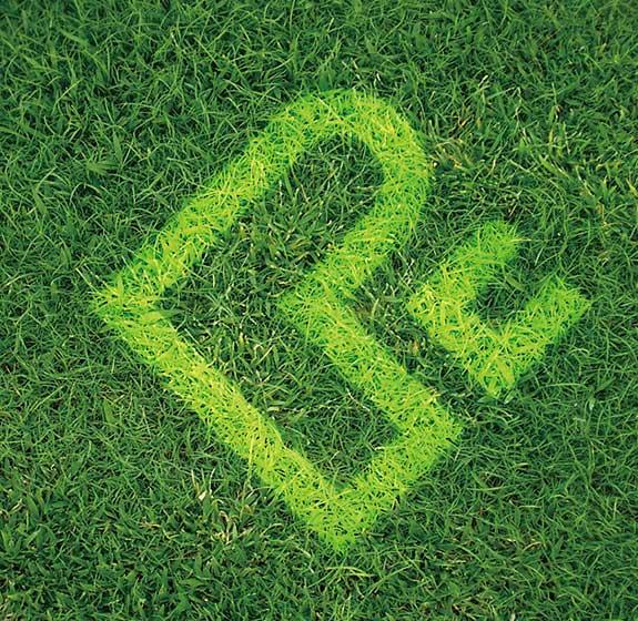 鹏程体育标志设计